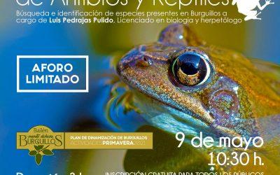 Jornada de muestreo de anfibios y reptiles en Burguillos